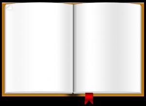 brown-book 2